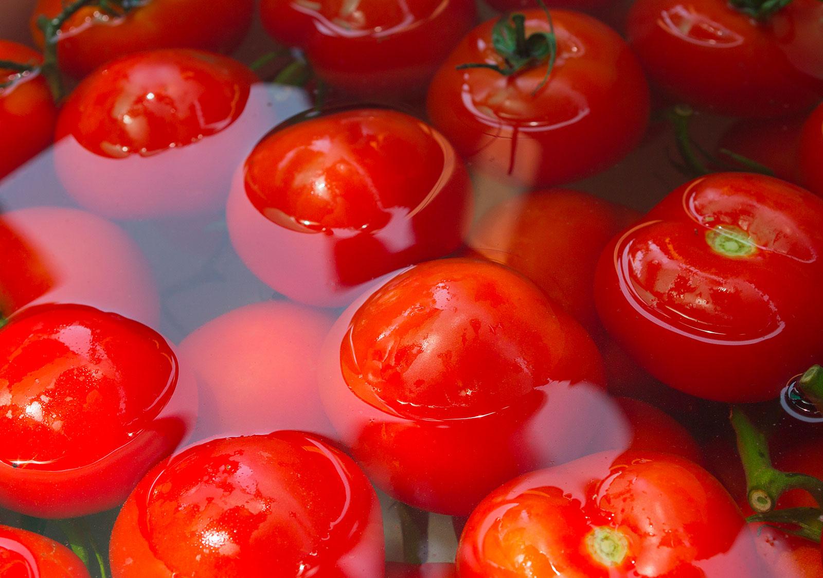 LAVATRICE A BARBOTAGE- Lavatrice per verdura e frutta