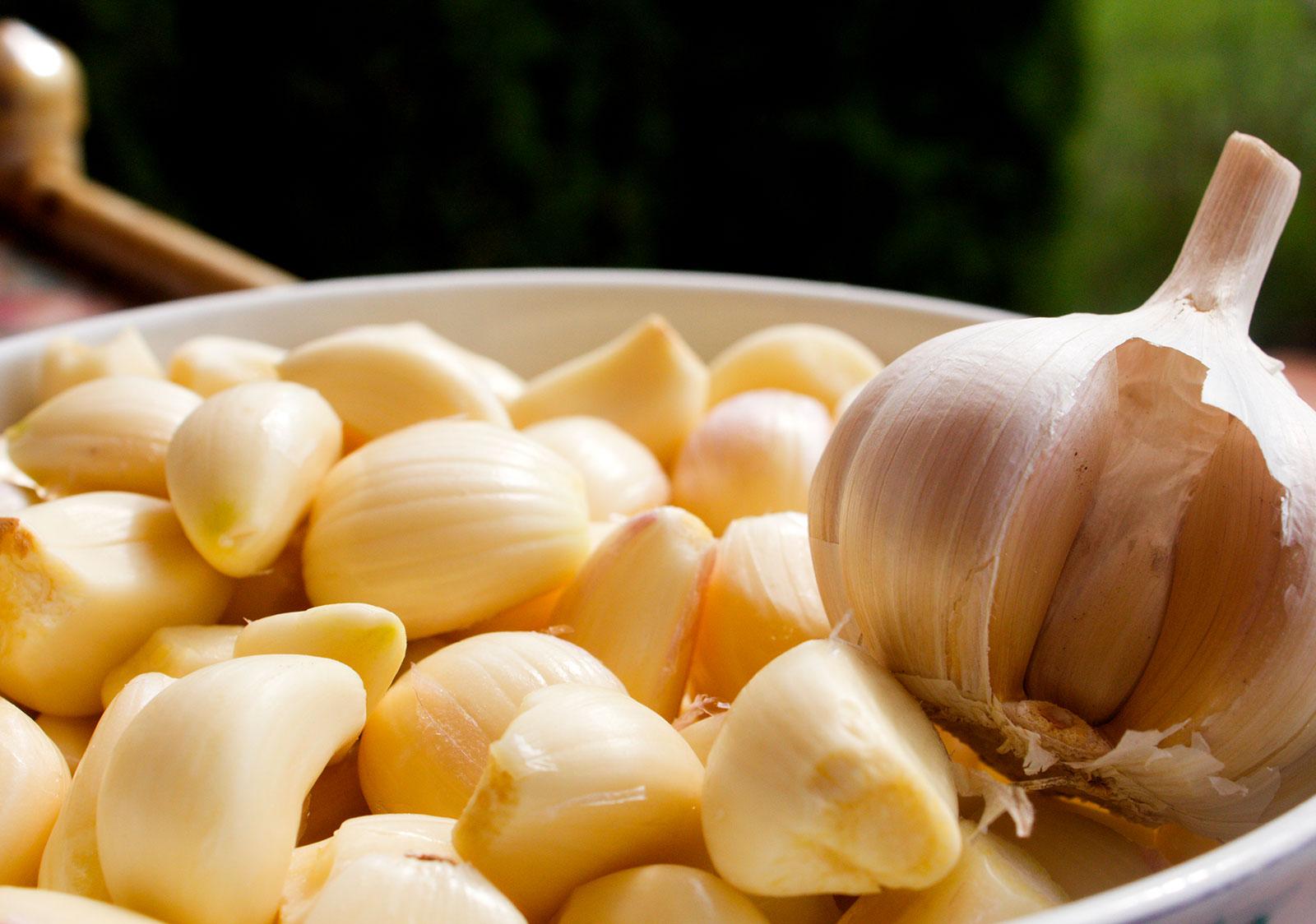 BOXER- quick garlic peeler Nilma
