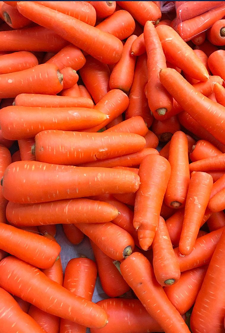PIONEER- Pelatrice rapida per patate e carote