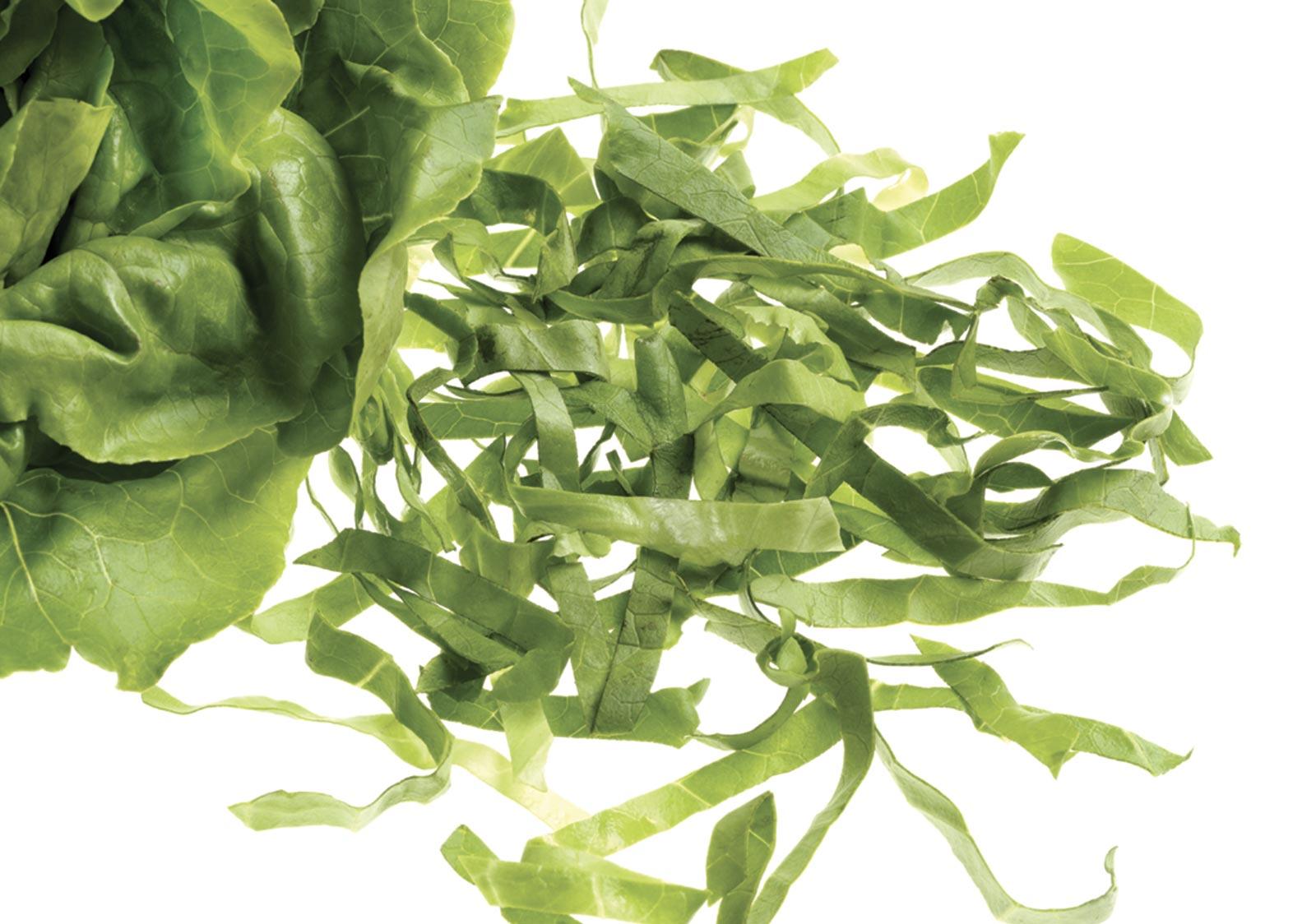 TVN 202- Taglierina per verdure, a ciclo continuo, con alimentazione a nastro