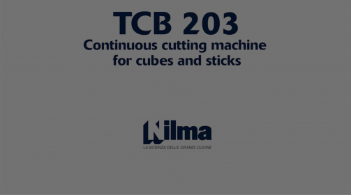 TCB 203 - CONTINUOUS DICING AND STRIP-CUTTING MACHINE Nilma